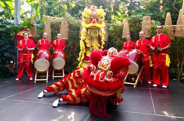 Das Löwen Tanzteam vom Shaolin Chan Tempel Luzern.