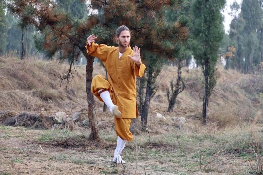 Kung Fu Portrait von Dominik