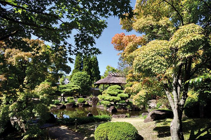 Zen Tempel Garten
