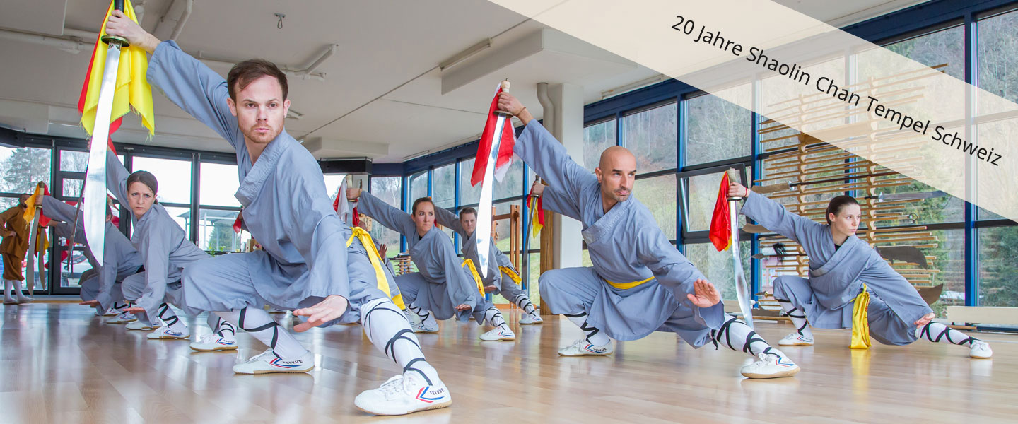 Kung Fu Klasse in Luzern beim Training