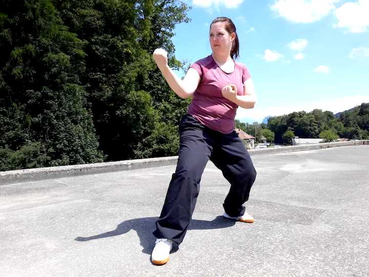 kung fu portrait
