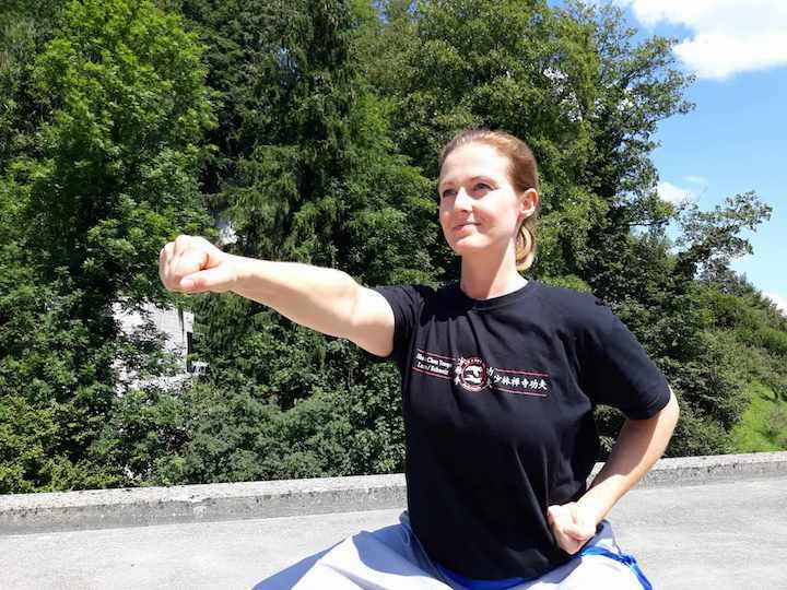 kung fu in luzern