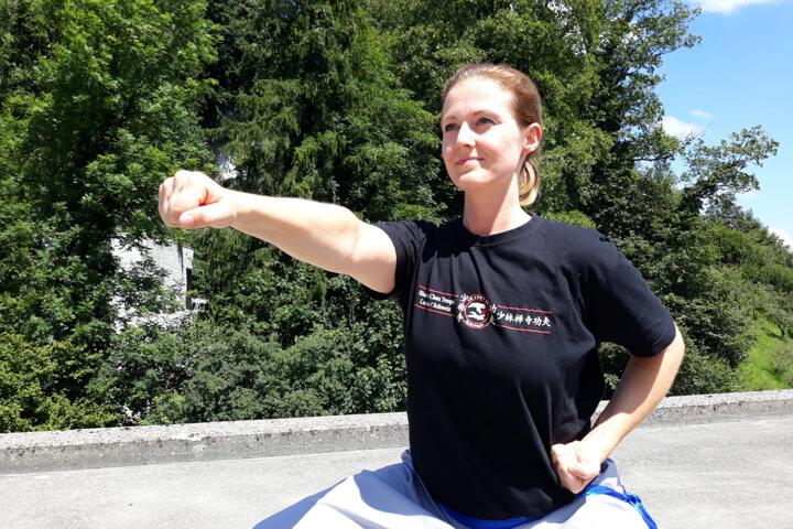 titelbild - kung fu praktizierende
